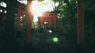 Explore-Kyotos-Red-Gates-4.jpg