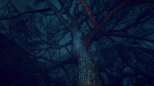 Lumber-Island-15.jpg