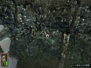 Return_to_Mysterious_Island__image04.jpg
